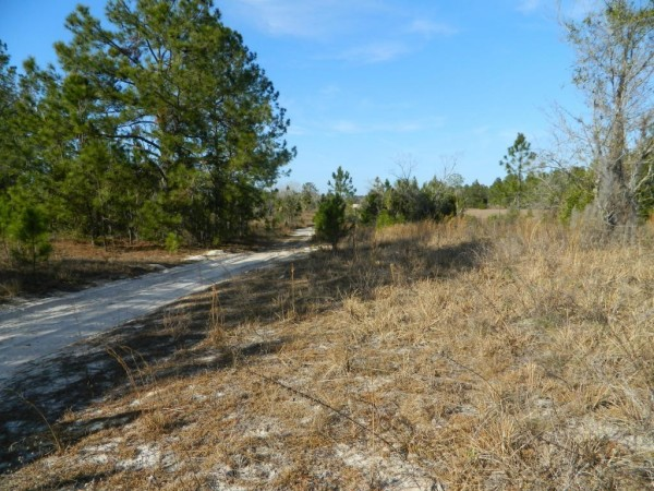 1.12 Acres for Sale in Pomona Park, FL