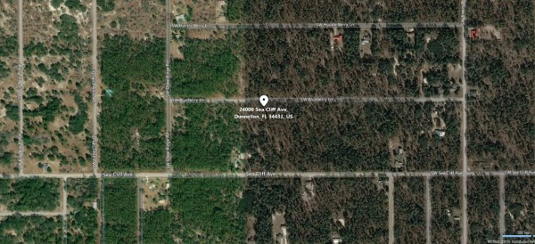 0.99 Acres for Sale in Dunnellon, FL