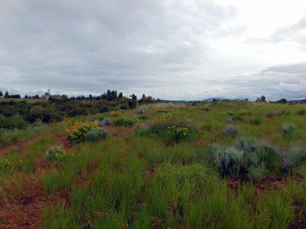 0.42 Acres for Sale in Chiloquin, OR