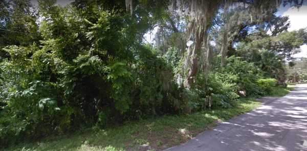 3 Lots for Sale in Deland, FL
