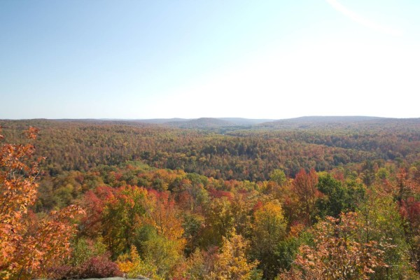 18.8 Acres for Sale in Star Lake, NY