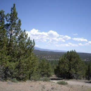 1.47 Acres for Sale in Alturas, CA