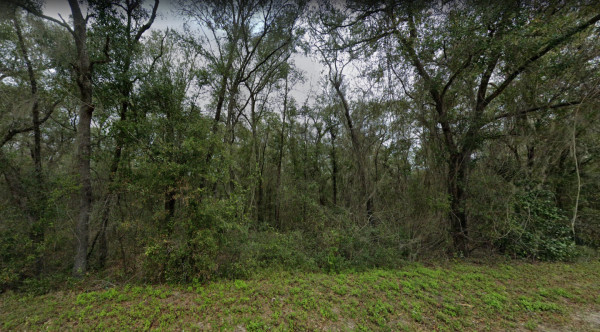 0.2 Acres for Sale in Interlachen, FL