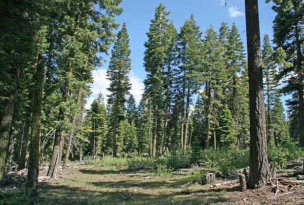 1.92 Acres for Sale in Alturas, CA