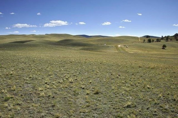 5 Acres for Sale in Hartsel, CO