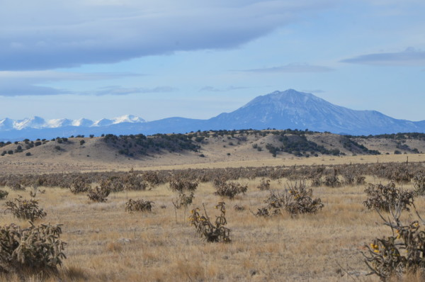 40.01 Acres for Sale in Model, CO
