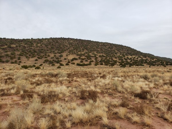1.1 Acres for Sale in Snowflake, AZ