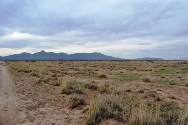 1 Acre for Sale in Deming, NM