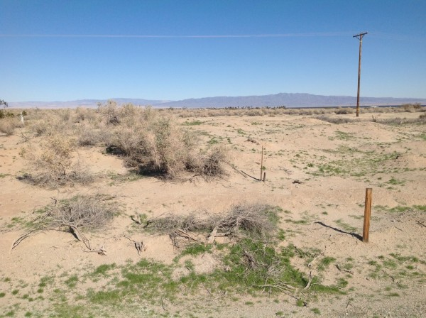 0.23 Acres for Sale in Thermal, CA