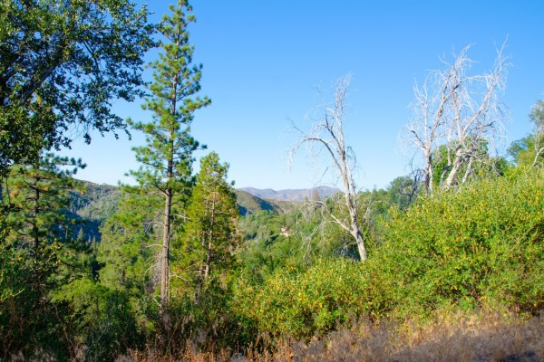 0.04 Acres for Sale in Lake Arrowhead, CA