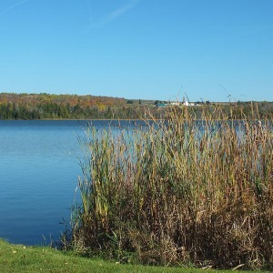 44 Acres for Sale in Presque Isle, ME