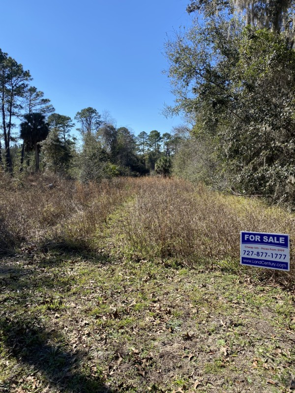 0.94 Acres for Sale in Satsuma, FL