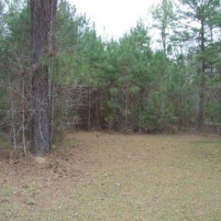 2.53 Acres for Sale in Westville, FL
