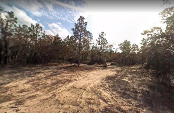 0.88 Acres for Sale in Florahome, FL