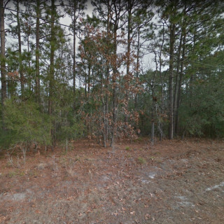 0.24 Acres for Sale in Boiling Spring Lakes, NC
