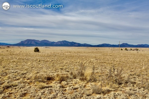 20 Acres for Sale in Edgewood, NM