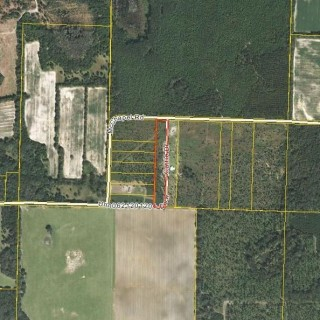 5 Acres for Sale in Marianna, FL