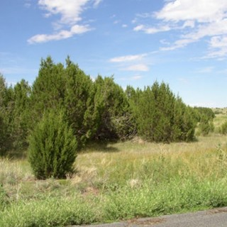1.05 Acres for Sale in Saint Johns, AZ