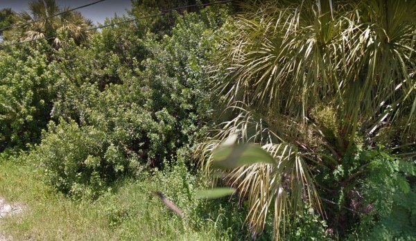 0.2 Acres for Sale in New Port Richey, FL