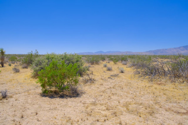 2.61 Acres for Sale in Mojave, CA