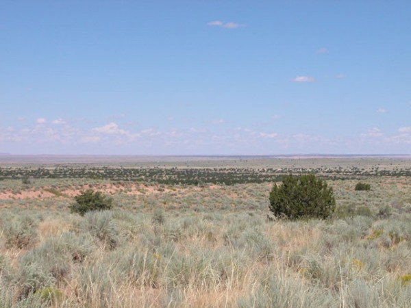 1.36 Acres for Sale in Holbrook, AZ