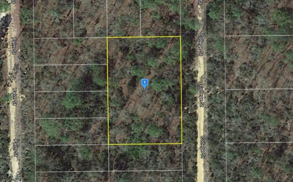 0.4 Acres for Sale in Interlachen, FL