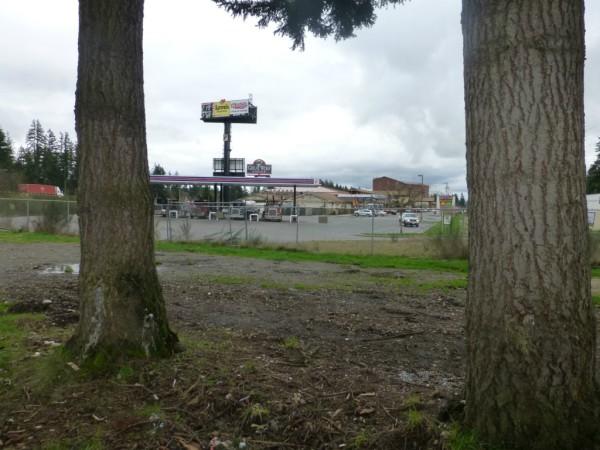Land for Sale in Centralia, WA