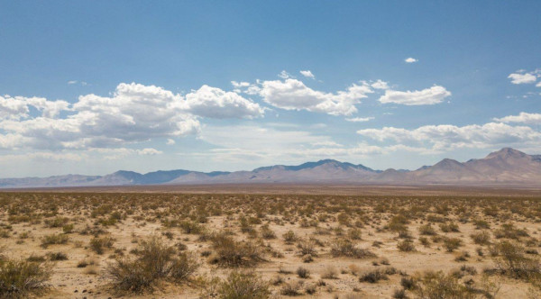 121.53 Acres for Sale in Inyokern, CA
