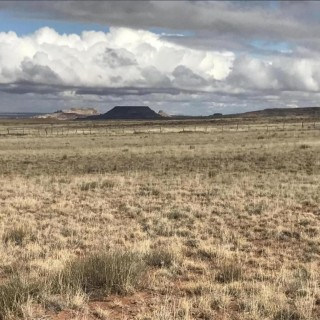 3 Acres for Sale in Holbrook, AZ