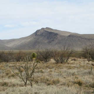 40 Acres for Sale in El Paso, TX