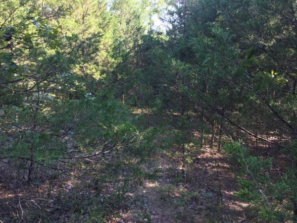 0.15 Acres for Sale in Mountain Home, AR