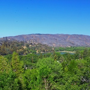 0.18 Acres for Sale in Lake Hugheslake Hughes, CA
