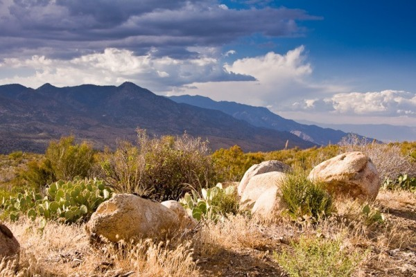20 Acres for Sale in San Jacinto, CA