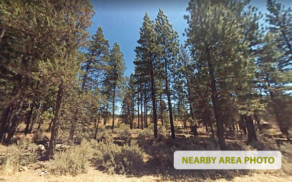 1.56 Acres for Sale in Lookout, CA