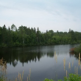 4.55 Acres for Sale in Chapman, ME