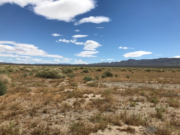 5 Acres for Sale in Randsburg, CA