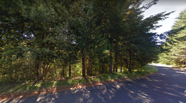 0.27 Acres for Sale in Shelter Cove, CA