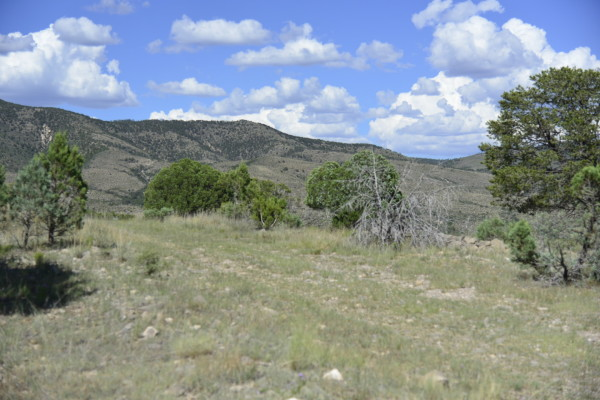 0.51 Acres for Sale in Timberon, NM