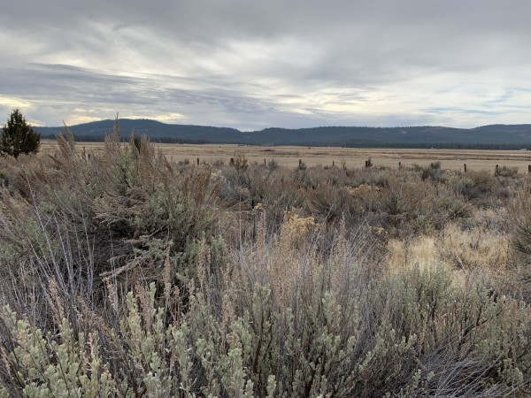 1.56 Acres for Sale in Chiloquin, OR