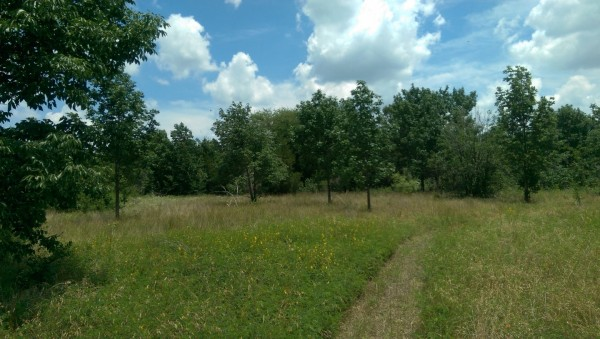 0.1 Acres for Sale in Eustace, TX