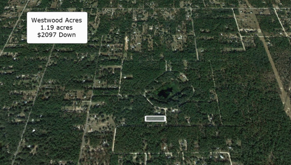 1.19 Acres for Sale in Dunnellon, FL