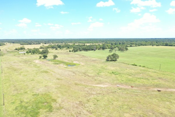 18.73 Acres for Sale in Hockley, TX