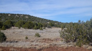 0.27 Acres for Sale in Concho, AZ