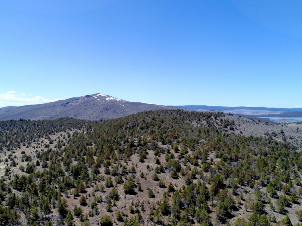 20 Acres for Sale in Madeline, CA