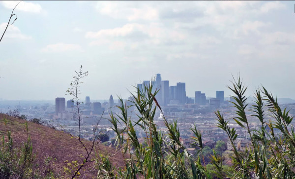 0.04 Acres for Sale in Los Angeles, CA
