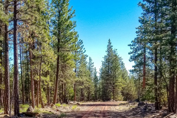 0.9 Acres for Sale in Alturas, CA