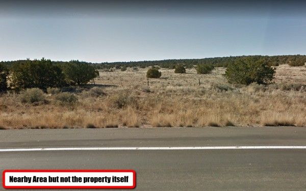 39.98 Acres for Sale in Peach Springs, AZ