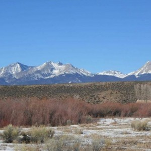 5 Acres for Sale in Fort Garland, CO