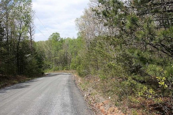 6.17 Acres for Sale in Amherst, VA
