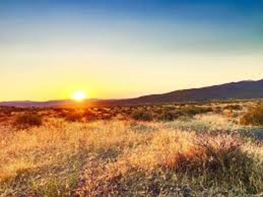 40 Acres for Sale in Unionville, NV